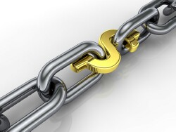 chain-with-dollar-link smaller